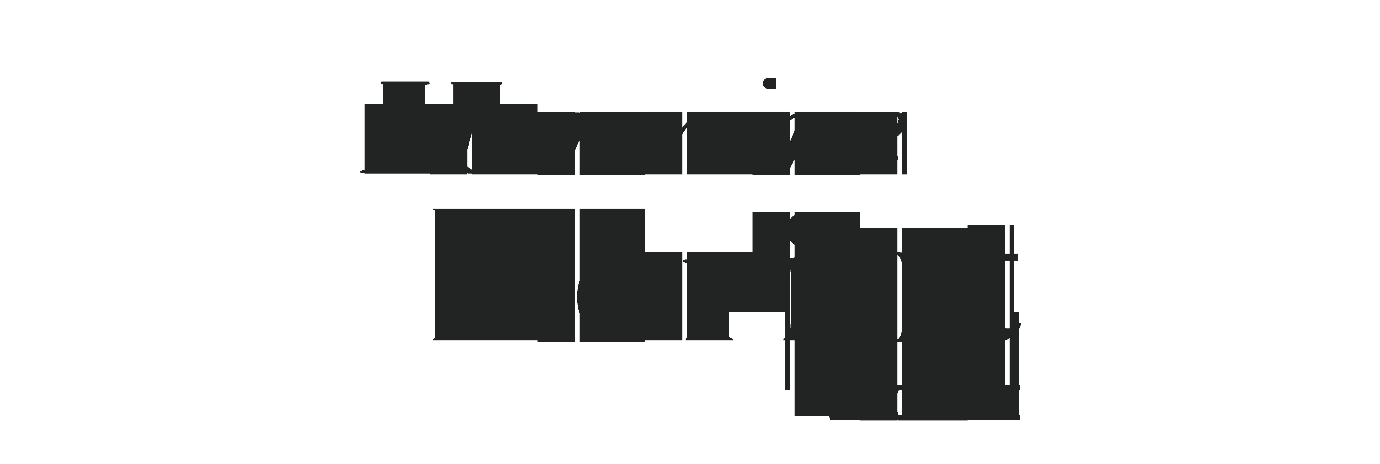 LOGO-hermine-horiot